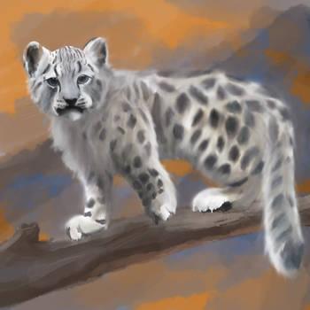 Small Big Cat SL by Juoruru