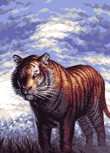 Tiger by Trick17