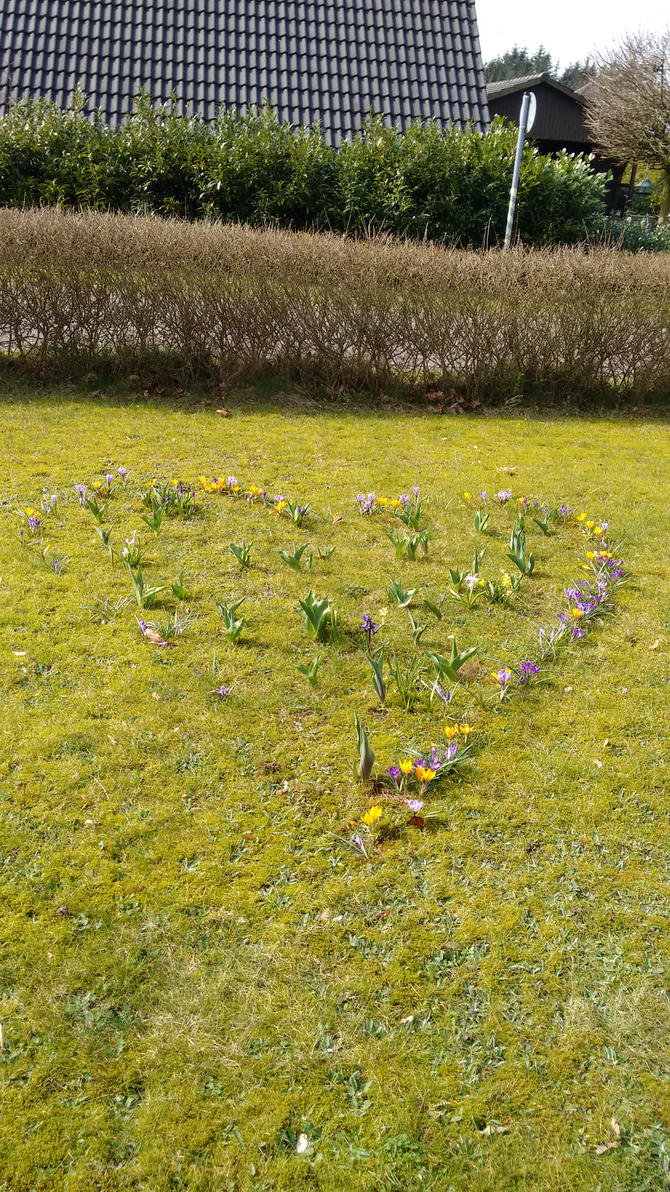 Heart of flowers by Skopela