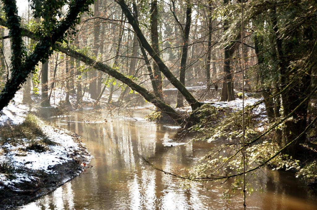 Beck en Delle river by Annierl