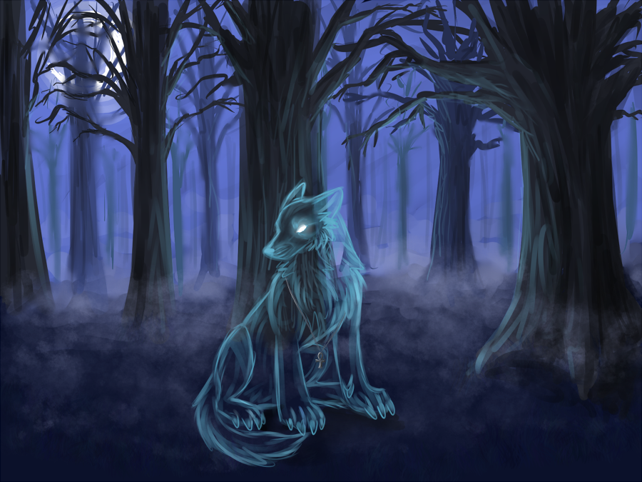 Shaman Ghost Wolf by Khamisu on DeviantArt