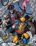 X-Men Origins: Wolverine AP