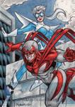DC Comics 'The New 52' - Hawk + Dove