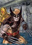 Wolverine - Marvel Premier