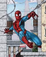Spider-Man - Marvel Universe by tonyperna