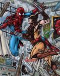 Spider-Man vs Wolverine - MGH