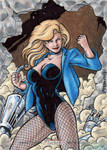 DC: Women of Legend - Black Canary