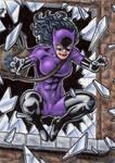 DC: Women of Legend - Catwoman