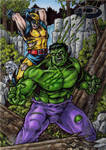 Hulk Vs Wolverine - Marvel Premier AP