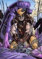 Wolverine - Marvel Premier 2 by tonyperna