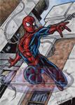 Spider-Man - Sketch Card