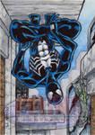 Spider-Man (Black Costume) - Sketch Card