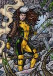 Rogue - Marvel Universe AP