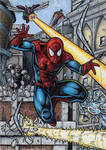 Spidey Vs Deadly Foes of Spider-Man