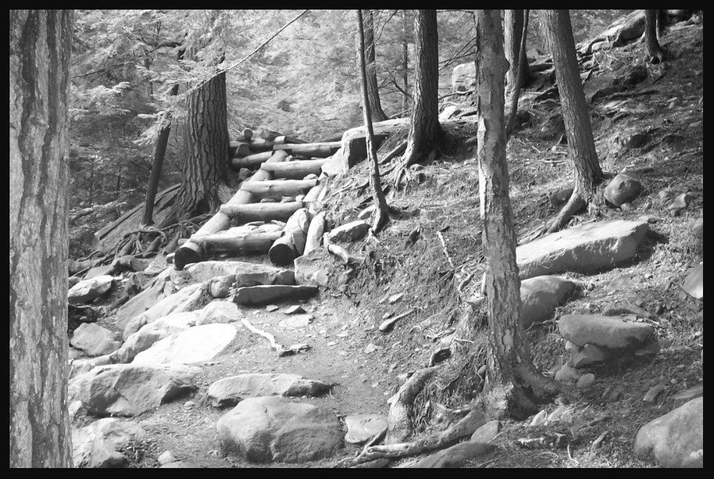 Natural Sidewalk in Grey by Dareth-Tsume