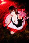 Crimson Camellia