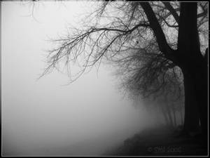 Gloomy day by Smil