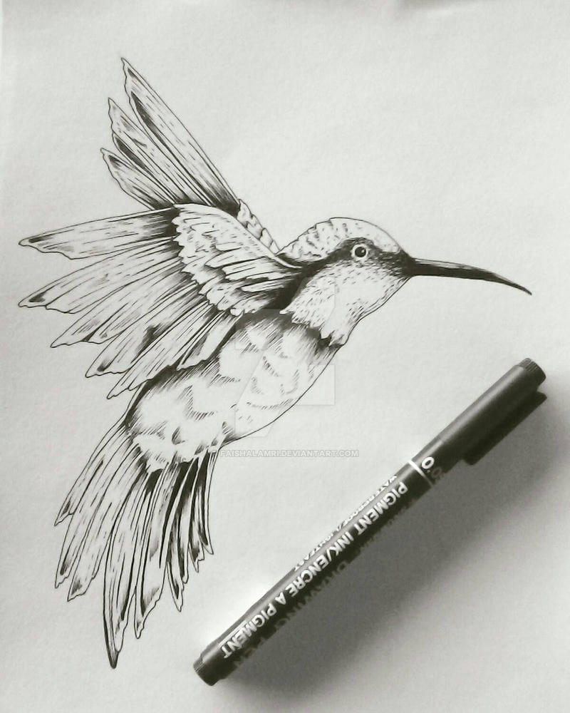 Line Drawing Hummingbird : Hummingbird drawing by faishalamri on deviantart