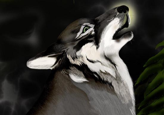 wolf1 by AlinaRettler