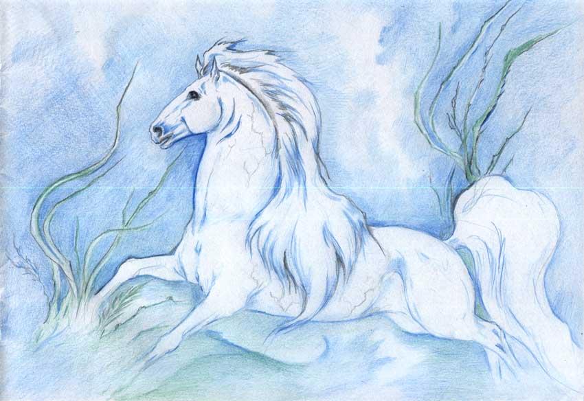 Kelpie by AlinaRettler