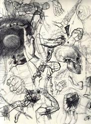 Anatomy Study by spiddyocksgosouth