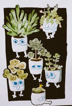 Little Succulent guys