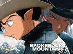 Brokeback Mountain Sess-Kouga