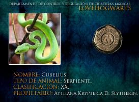 Cubelius by lovehogwartsweb