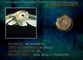 Wonderful by lovehogwartsweb