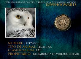 Hedwig by lovehogwartsweb