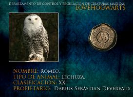 Romeo by lovehogwartsweb