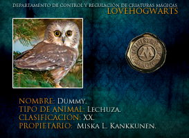 Dummy by lovehogwartsweb