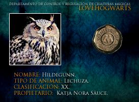 Hildegunn by lovehogwartsweb