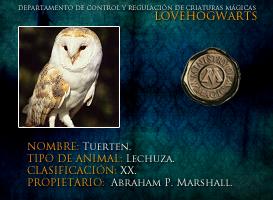 Tuerten by lovehogwartsweb