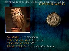 Pigwidgeon by lovehogwartsweb