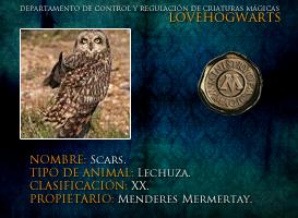Scars by lovehogwartsweb