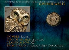 Rigel by lovehogwartsweb