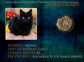 Indira by lovehogwartsweb