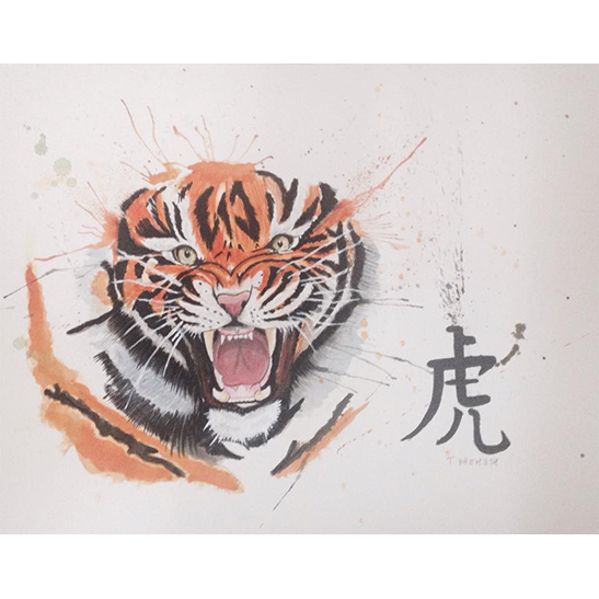 Tiger by adiga45