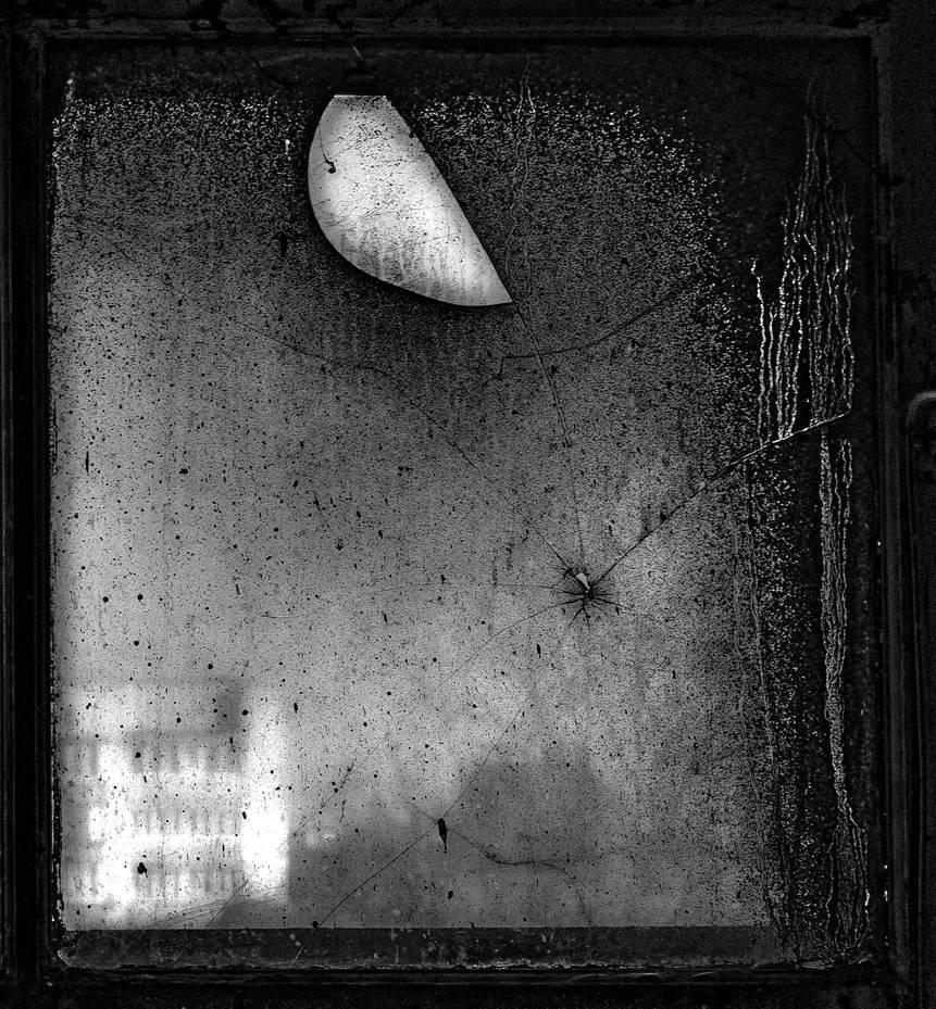 Halfmoon spider II by Vlodz