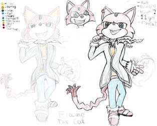 Flame the Cat redrawn by CrazyMates2300
