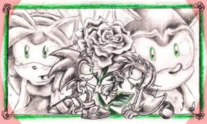 Behind the White Rose -Sonamy-