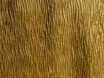Texture 21