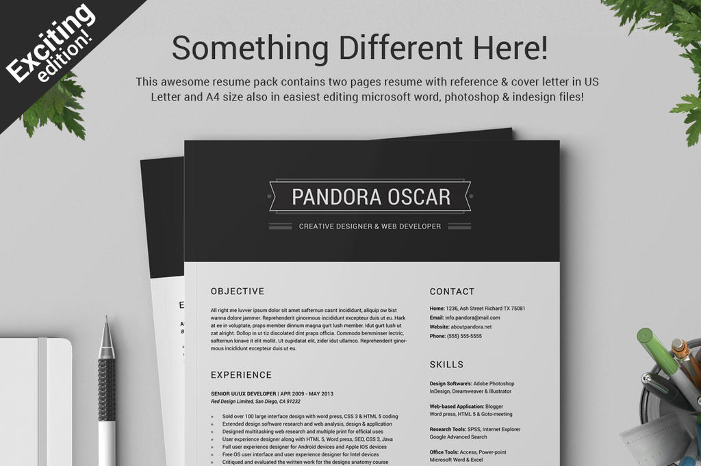 2 pages clean resume cv