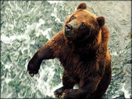 Bear by Zeitzeugin