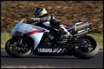 Yamaha R1 Bike Colors racing