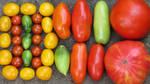 Homegrown Heirloom Tomatoes