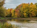 Silent Autumn Water