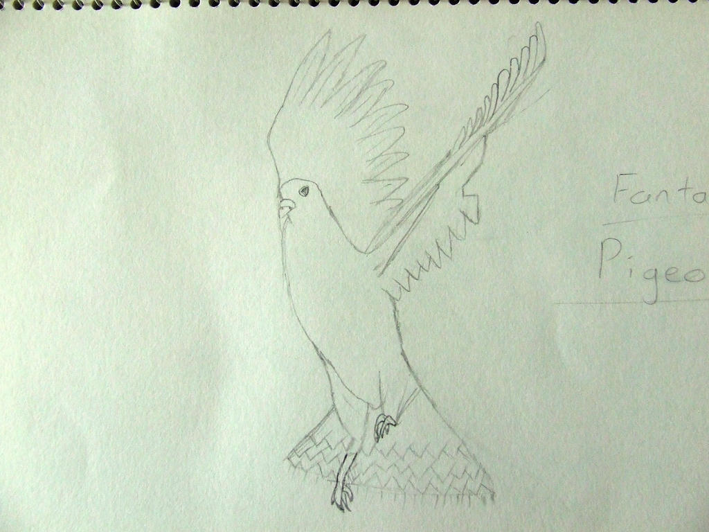 Fantail Pigeon by Skarlette8000