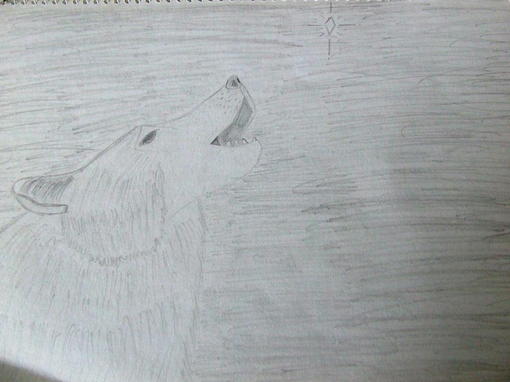 Wolf by Skarlette8000